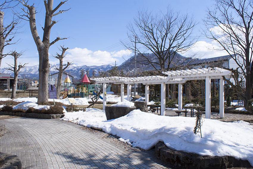 プロムナードの雪はほぼ消えて、お散歩日和です。